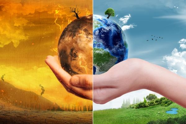 Expert Ecologie pour le Greendeal (06)
